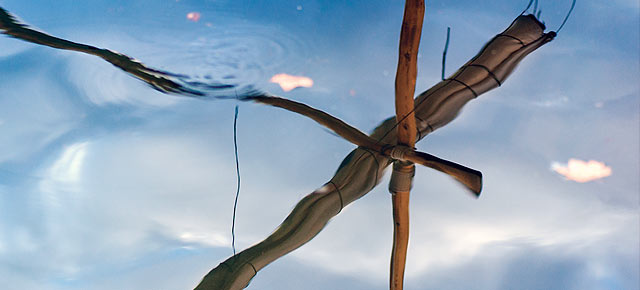Imagen del Reportaje sobre Resiliencia